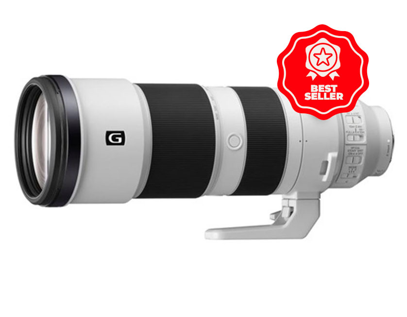 The Sony FE 200-600mm f/5.6-6.3 was the biggest selling lens of the year