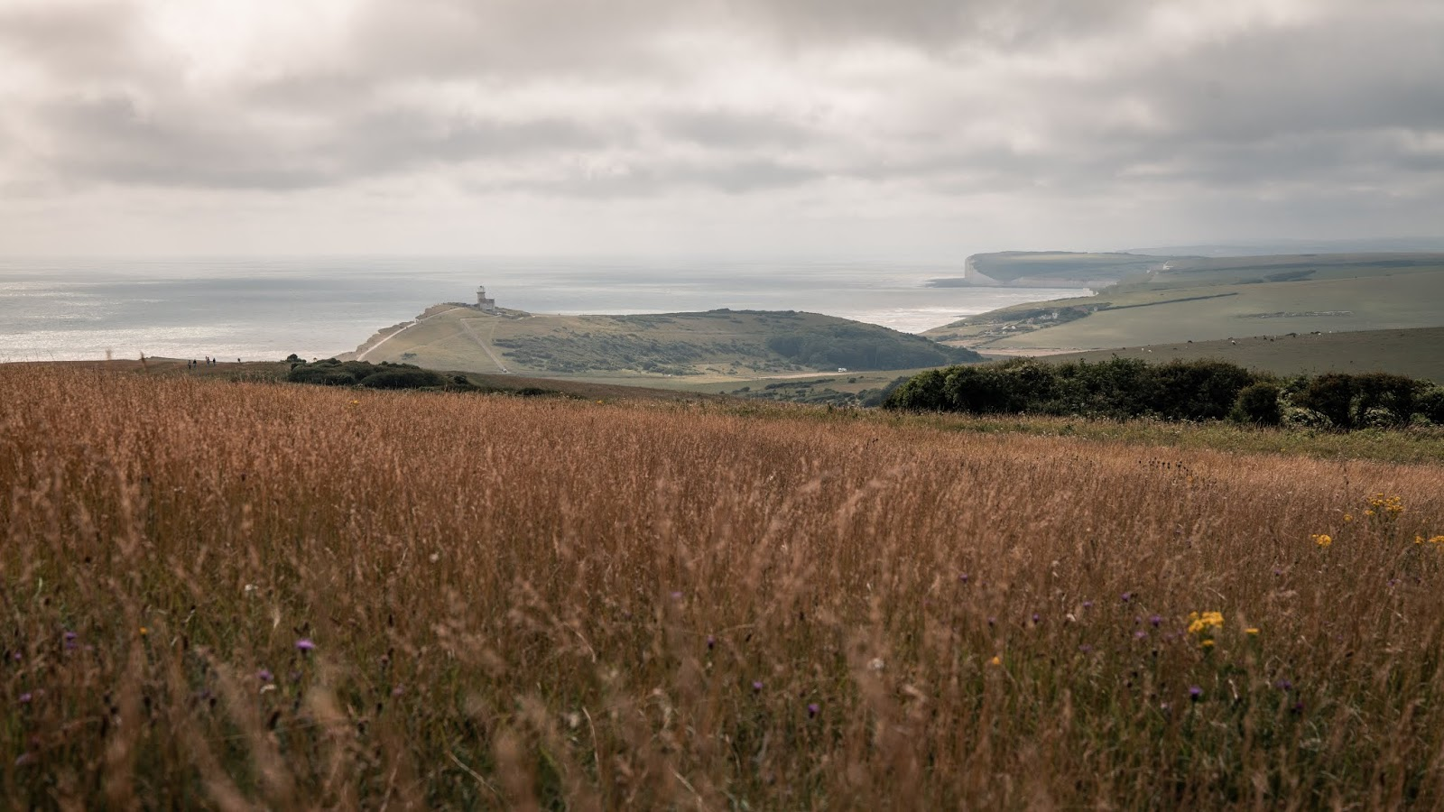 Panasonic Lumix 24-70mm f2.8 Landscape