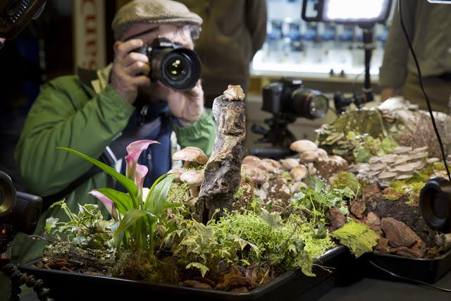 4-park-cameras-wildlife-day
