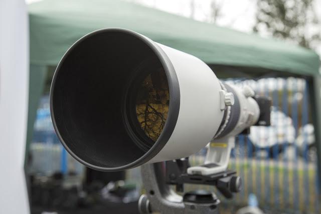 9-park-cameras-wildlife-day