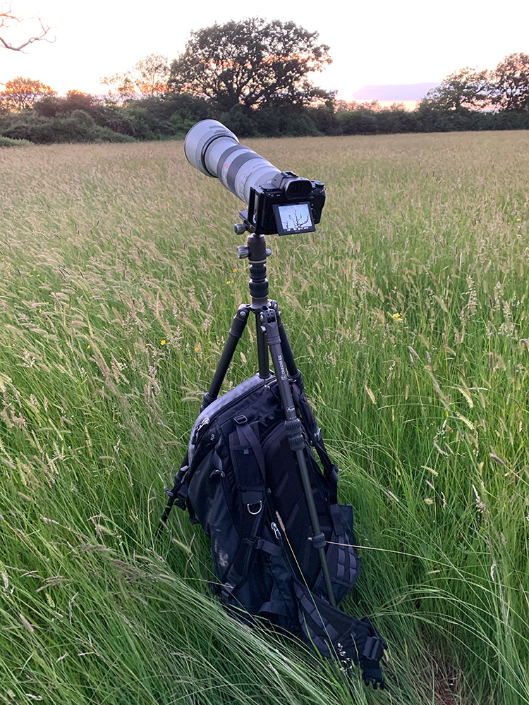 Using a long telephoto zoom on this compact tripod