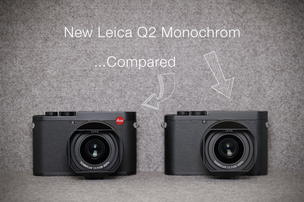Comparison between the Leica Q2 and Q2 Monochrom