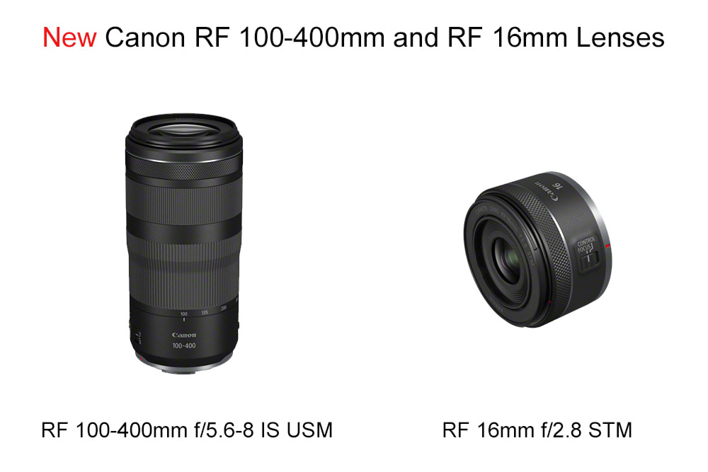 New Canon RF 100-400mm and RF 16mm Lnes review
