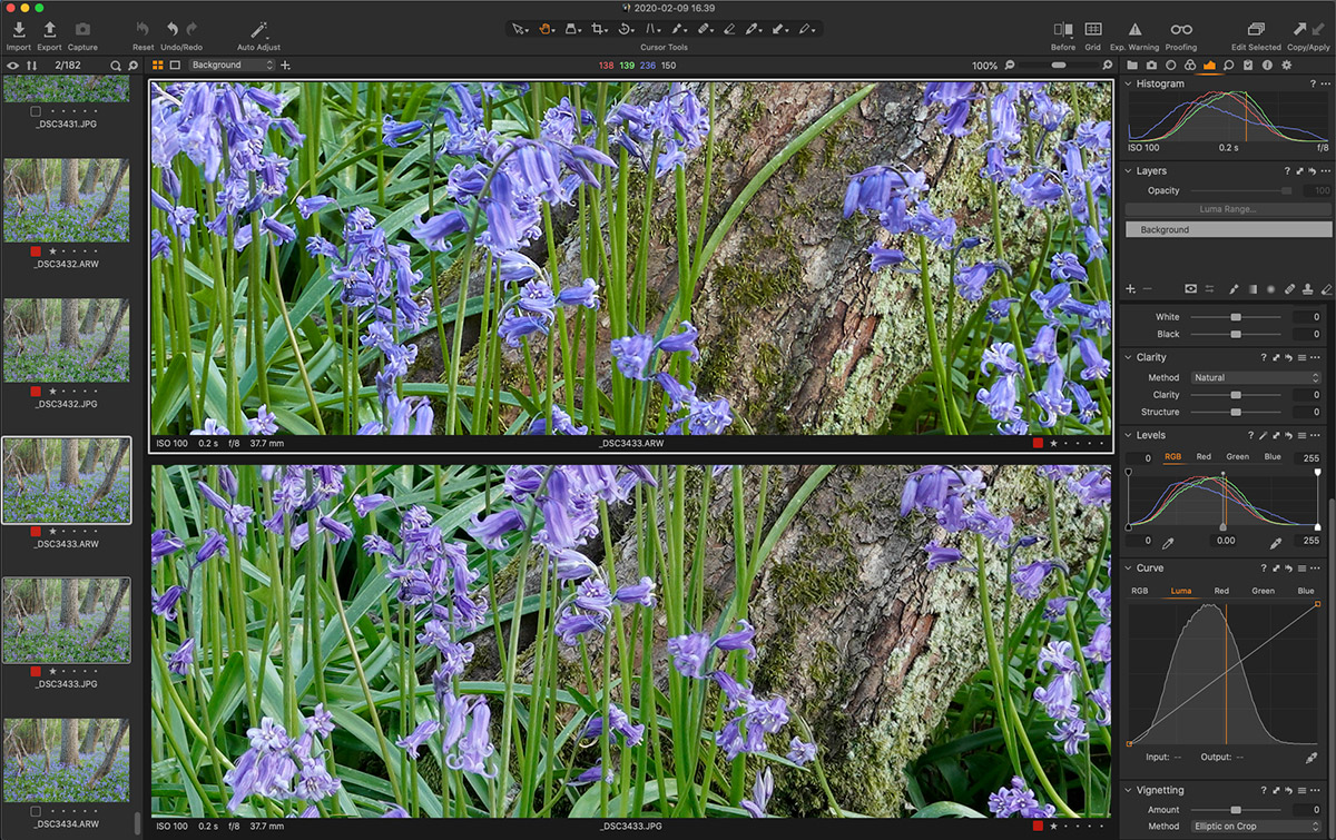 100 crop of RAW vs JPEG in Capture One