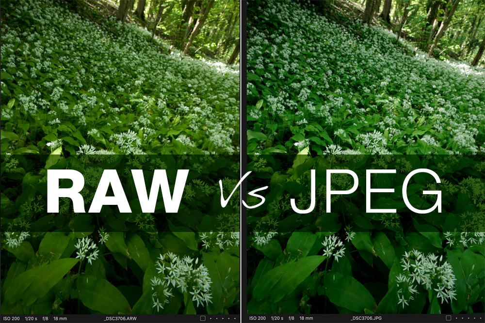 RAW Vs JPEG Why shoot in raw