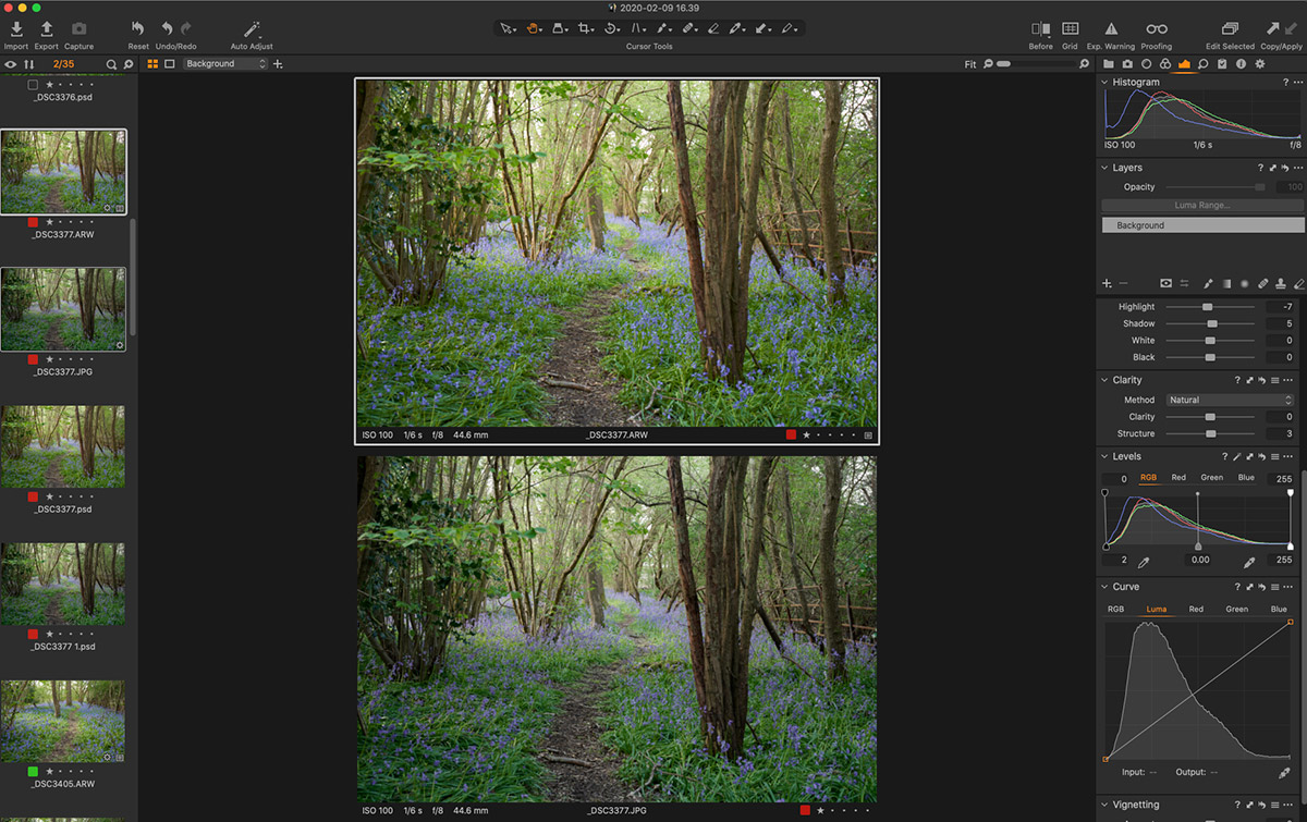 Full image RAW vs JPEG in Capture One Pro Editing mode
