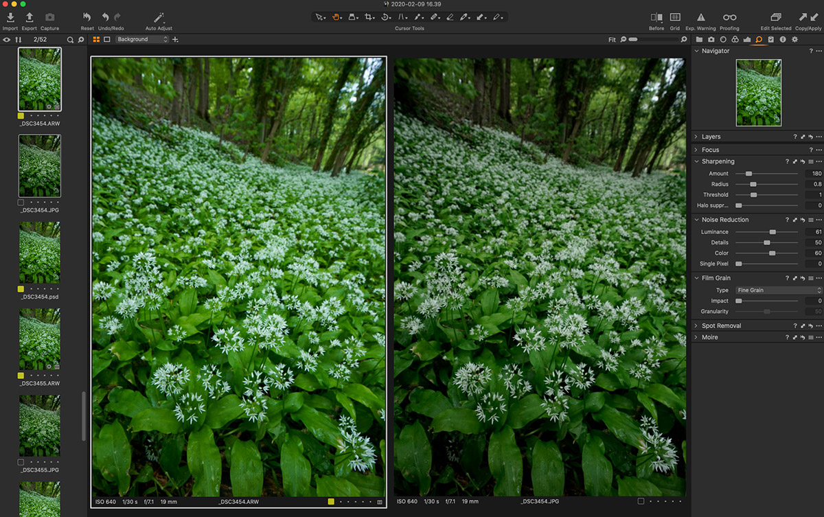 Example of colours in RAW vs JPEG images