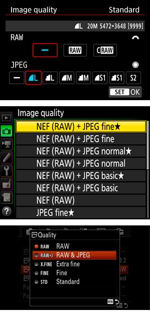 Selecting RAW in camera menu