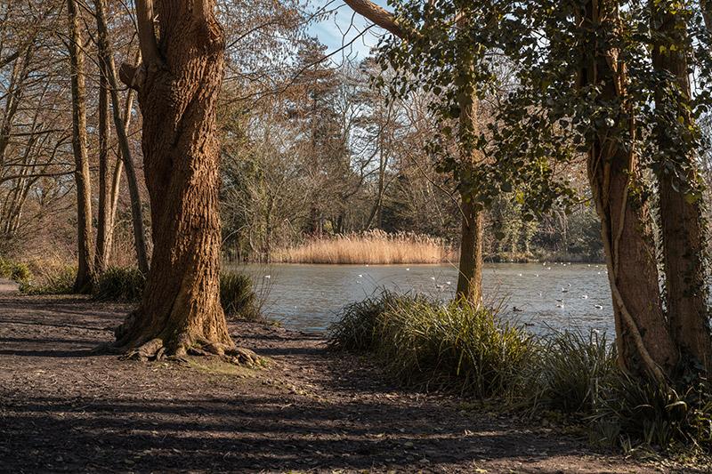 Sample 2 landscape image