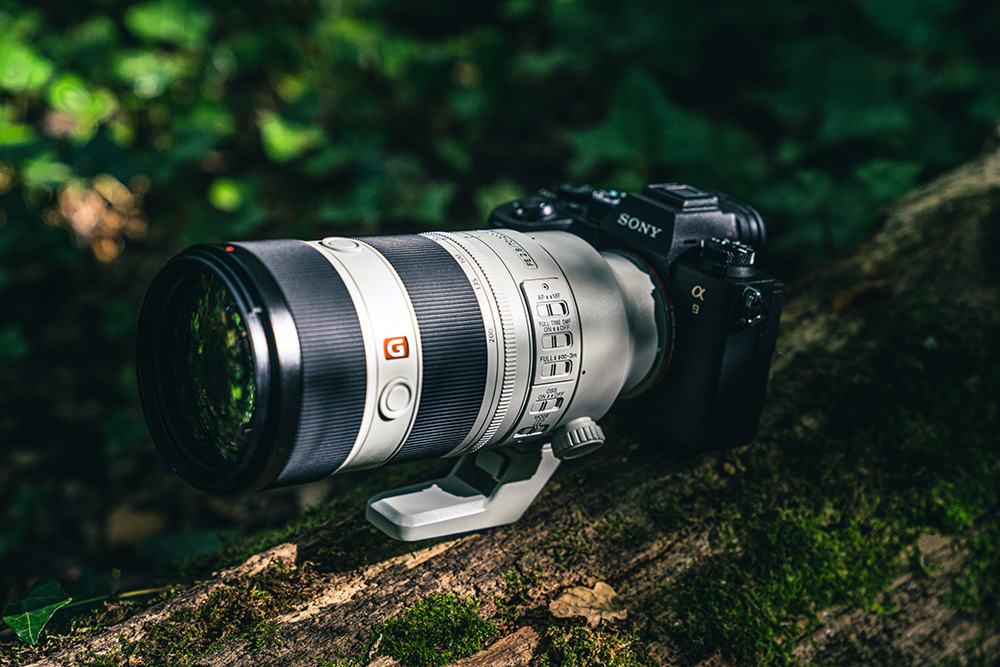 How the mark 2 70-200mm lens looks in the wild
