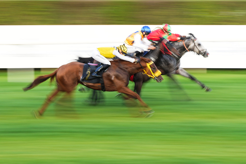 Sample of horse racing with the 70-200mm GM mark 2 lens