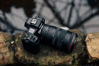 Canon RF 100mm f2.8L Macro Lens Review