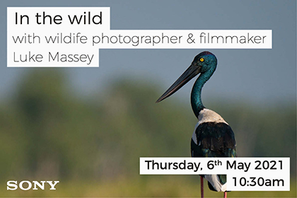 In the wild with photographer Luke Massey and Sony