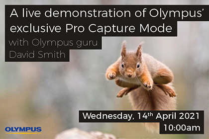 A live demonstration of Olympus' exclusive Pro Capture mode
