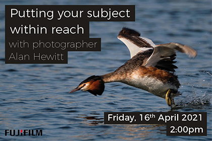 Putting your subject within reach; with wildlife photographer Alan Hewitt