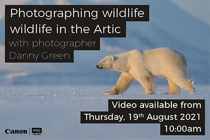 Photographing wildlife in the Artic with Danny Green