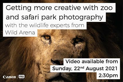 GETTING MORE CREATIVE WITH ZOO AND SAFARI PARK PHOTOGRAPHY