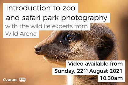 INTRODUCTION TO ZOO AND SAFARI PARK PHOTOGRAPHY