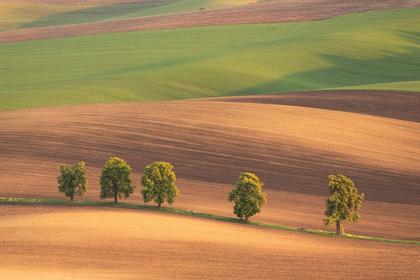 Long Lens Landscape Photography with David Clapp
