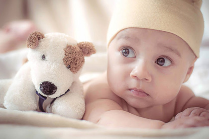 The Newborn Photography Show How To Be A Newborn Photographer