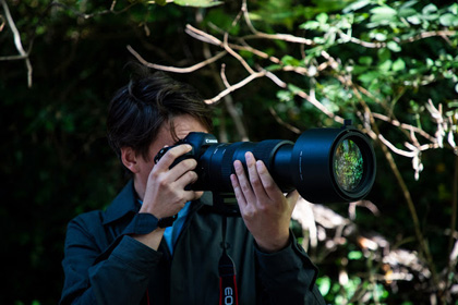 Sigma 60-600mm lens first look