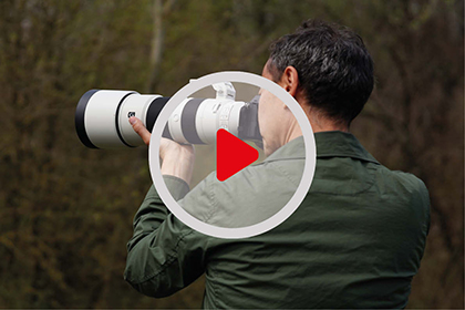 Wildlife Photography with Sony lenses