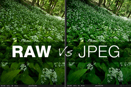Why Shoot Photos in RAW