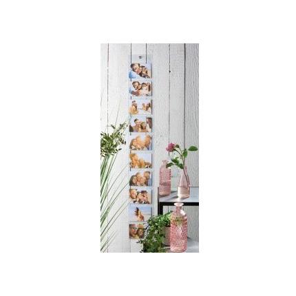 Adventa Photo Curtain Transparent 6x4