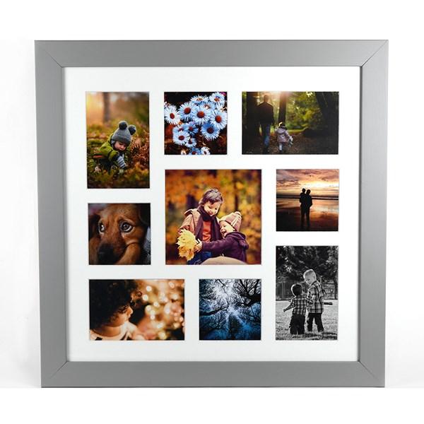 Grey Avoset collage frame