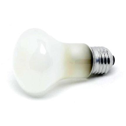 Elinchrom Super Leuci 100W Modelling Lamp for D-Lite
