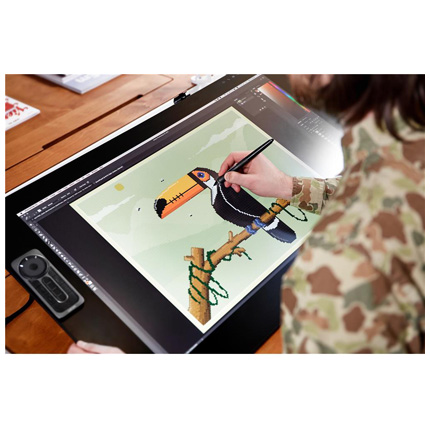 Wacom Cintiq Pro 24 creative Pen Display Video 02