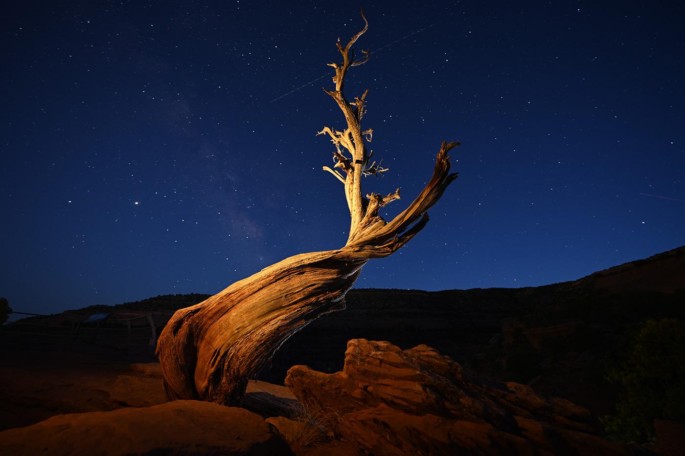 z7-ii-sample-night-landscape